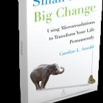 Small Move Big Change book_bigger